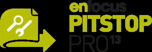 logo_pitstop13
